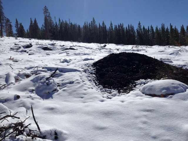 The slash pile is still smoldering after days.  Note the heat has kept the snow melted.